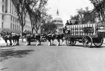 Historic Clydesdales photos