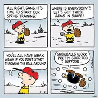 Image result for peanuts spring training