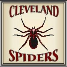 https://asipofsports.files.wordpress.com/2019/06/cleveland-spiders-logo.jpg
