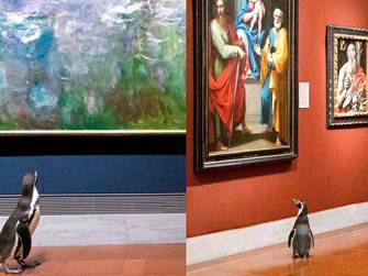 Penguins go on a field trip to the art museum for a day